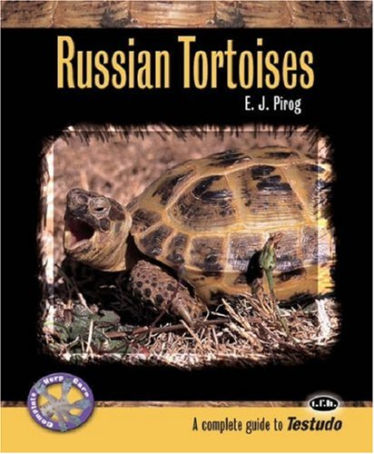 complete guide to russian tortoises