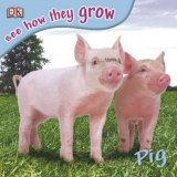 See How They Grow Pig with Sticker (See How They Grow)