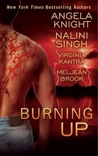 Burning Up (Includes: Iron Seas, Prequel; Children of the Sea, #3.5; Psy/Changeling #8.5)