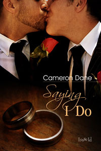 Saying I Do (Quinn Security, #3)