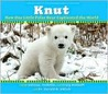 Knut: How One Little Polar Bear Captivated The World