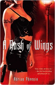 A Rush of Wings (The Maker's Song, #1)