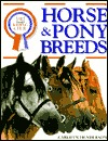 DK Riding Club: Horse and Pony Breeds