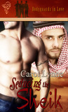 Seducing the Sheik