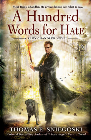 A Hundred Words for Hate (Remy Chandler, #4)
