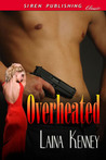 Overheated  (DIG Security 1)