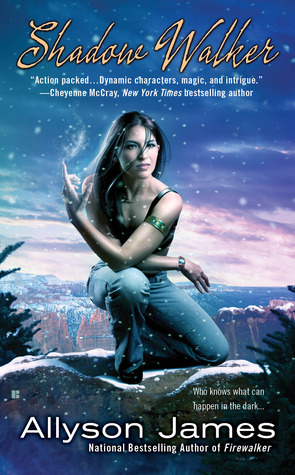 Shadow Walker (Stormwalker #3)