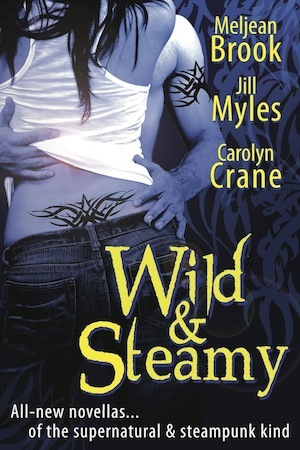 Wild & Steamy anthology