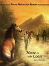 Horse on the Loose (Pinto Mountain Series, #1)