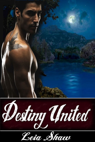Destiny United by Leia Shaw