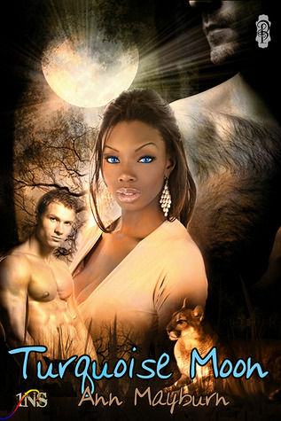 Turquoise Moon Book Cover