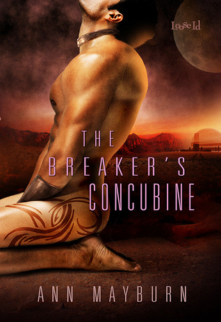 The Breaker's Concubine Book Cover