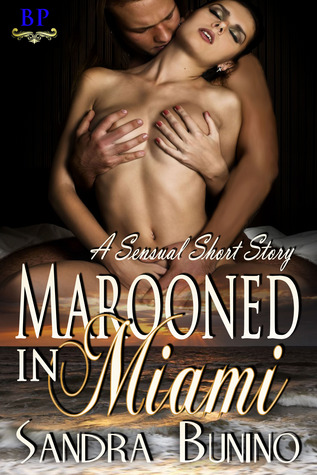 Review: Marooned in Miami by Sandra Bunino