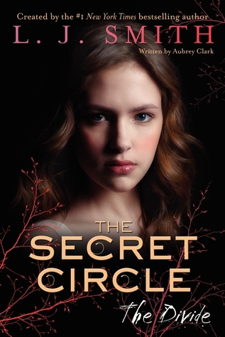 The Divide (The Secret Circle, #4)