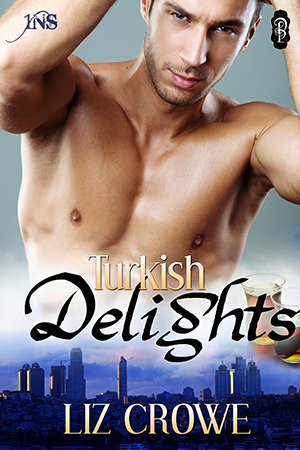Turkish Delights (1 Night Stand, #54)