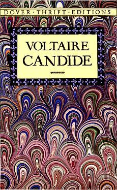 a brief summary of voltaires candide Chapter summary for voltaire's candide, chapter 2 summary find a summary   candide is a quick study, but he has no idea he's actually in the army thinking.