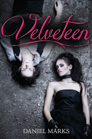 book cover of Velveteen by Daniel Marks