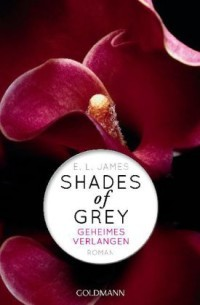 Geheimes Verlangen (Fifty Shades, #1)