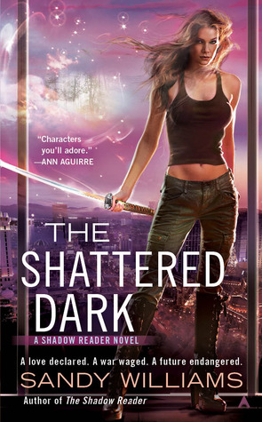 The Shattered Dark (McKenzie Lewis, #2)