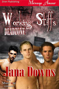 Working Stiffs (Deadzone #1)